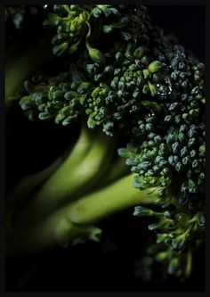 In traditional Chinese medicine, broccoli is a food with marvelous healing powers.  It provides a variety of strong antioxidants that prevent cancer & reduce tumors.  It is low in calories & rich in vitamins & minerals that promote strong bones, eye health, good digestion, repair skin damage & boost the immune system.  It is also thermically beneficial to regulating the body's temperature.