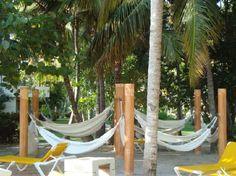 Helpful Review - Catalonia Bavaro Beach, Casino & Golf Resort: Hammocks