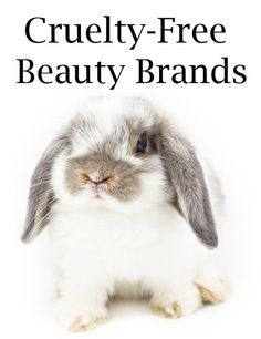 Cruelty-Free Beauty Brands- YES ! RODAN + FIELDS Dermatologists products are on the PETA approved list.