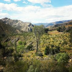 43 miles on the Lower Sisquoc Loop in the San Rafael Wilderness of Southern California Los Padres National Forest, Mojave Desert, Big Sur, Southern California, Wilderness, The Outsiders, March, Hiking, San