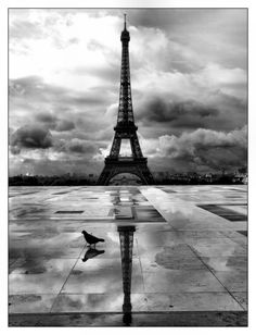 Paris IV by ~mollymelone on deviantART