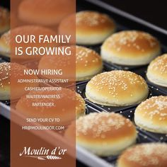 We are looking for new members to join our family. To apply send your CV to hr@moulindor.com or contact us on 09/224671-2 ext. 245 Dont forget to share and tag someone who might be interested! Open Vacancies: -Administrative Assistant (PM shift) -Cashiers/Operators (AM & PM shifts) -Waiters/Waitresses -Bartenders (PM shift) #work #job #lovemyjob #cv #waiter #waitress #bakery #restaurant #tag #tagafriend #bartender #whatsuplebanon #lebanon #lebanese #sharingiscaring #teamwork #recruitment…