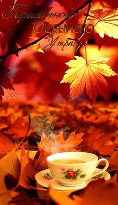 Осень анимация картинки открытки фото блестящие