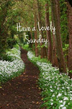 Sunday Morning Wishes, Happy Saturday Morning, Morning Morning, Morning Blessings, Good Morning Greetings, Happy Weekend Quotes, Happy Morning Quotes, Morning Memes, Good Morning Picture