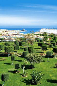 Cine a zis ca Egiptul nu e... verde? ;-) Rasfat ca-n Resort-urile de Lux din Egipt, mai rar! ;-)