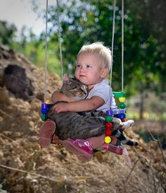 Cat + Baby + Swing = Aww