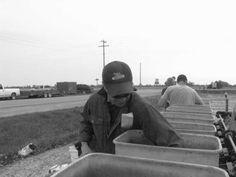 Planting Test Plots