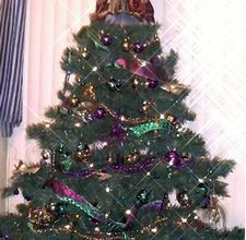 How to Make a Mardi Gras Themed Christmas Tree    Read more: How to Make a Mardi Gras Themed Christmas Tree | eHow.com http://www.ehow.com/how_4475274_make-mardi-gras-themed-christmas.html#ixzz1eGeiInIr