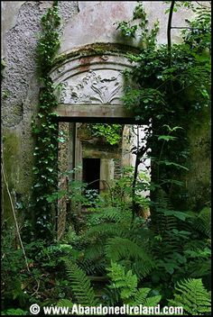 Abandoned Ireland Hoddersfield House, Co. Cork.