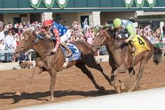 Fern Circle Stables'; Senior Investment nabbed West Coast at the wire after circling the field in a thrilling finish of the $200,000 the Stonestreet Lexington Stakes (G3) April 15, 2017 at Keeneland.