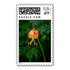 >>>Cheap Price Guarantee          Lily Post Postage Stamp           Lily Post Postage Stamp lowest price for you. In addition you can compare price with another store and read helpful reviews. BuyThis Deals          Lily Post Postage Stamp Online Secure Check out Quick and Easy...Cleck Hot Deals >>> http://www.zazzle.com/lily_post_postage_stamp-172760597737282446?rf=238627982471231924&zbar=1&tc=terrest