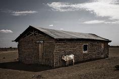 De droogte in Kenia | VICE | Netherlands