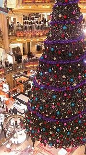 Christmas in Paris!