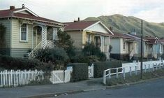 Railway houses in Tarikaka Street, Ngaio, Wellington, in the Planting Shrubs, Planting Plan, Front Porch Plants, Japanese Plants, Climbing Hydrangea, New Zealand Landscape, Front Gardens, History Online, All Plants