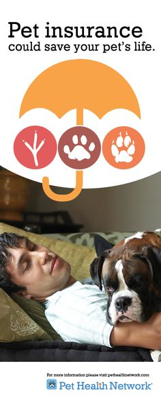 Pet insurance could save your pet's life. by Dr. Jeff Werber