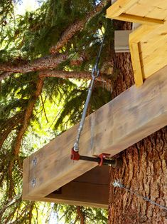 Colorado Tree House. Treehouse Tabs are a must! The little house sits on a platform that's connected to the tree by bolts and suspension cables. The tree trunk will grow around the bolts rather than around the house (tree tops grow up, while trunks expand outward). credit Missy Brown Design