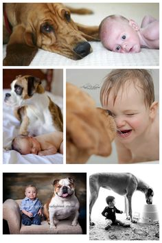 More Babies and Dogs
