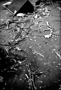Gladioli litter the stage after a Morrissey show at Garden State Arts Centre, New Jersey in July 1991