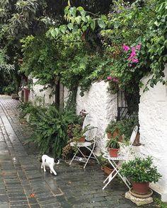 Rainy day at Kaş.. Yağmurdan kaçtık kaçtık en sonunda Kaş'da yakalandık😀😀🌧 Mutlu akşamlar bizden💚💚💚