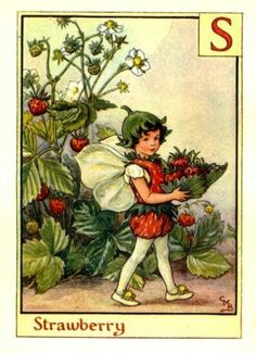 Strawberry-Flower-Fairy-Vintage-Print.jpg (394×544)