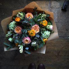 fresh bouquet of flowers My Flower, Fresh Flowers, Beautiful Flowers, Beautiful Bouquets, Winter Flowers, Ikebana, Orquideas Cymbidium, Plants Are Friends, Deco Floral
