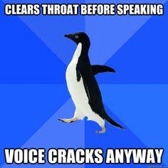 Socially Awkward Penguin.