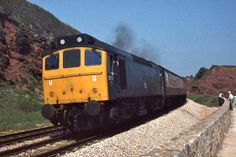 Class 25 Approaching Dawlish. British Rail, Electric Locomotive, Rats, Diesel, Places, Pictures, Diesel Fuel, Photos, Grimm