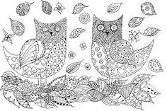 peacock coloring page adults - Pesquisa Google