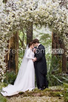 Gorgeous Sheath/Column V-neck Long-Sleeve Wedding Dresses Inspired by Bella in Twilight