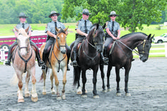 by Bill and Mary Weaver A tall, well-trained horse on police patrol can command respect, maneuver in dense conditions and control crowds in ways not possible without the use of the horse. Careful, thorough training is necessary, however, before a horse can be faced with potentially volatile situations. How the Pennsylvania State Police accomplish that…