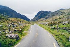 We rank the Top 7 Eco Attractions in Ireland to get you in touch with its strongest asset– its wild, untamed, and jaw-dropping natural scenery.