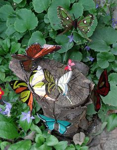 Tutorial: garden butterflies from soda cans.  Dawn, your next project.