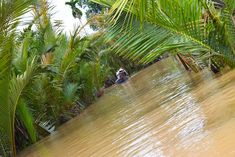 The Mekong Delta in southern Vietnam is a vast maze of rivers, swamps and islands, home to floating markets, Khmer pagodas and villages surrounded by rice paddies. Vietnam Travel, Asia Travel, Photoshop Express, Baguio City, Can Tho, Mekong Delta, Hawaii Vacation, St Francis, Palawan