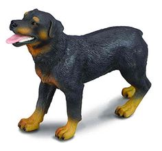 CollectA Rottweiler Figure *** This is an Amazon Affiliate link. Find out more about the great product at the image link.