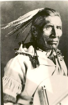 Striped Wolf  1927. G.S. photo