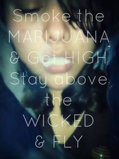Get high and fly, or a little toasted. It is your choice in edibles you make can… Stoner Quotes, Medical Marijuana, Cannabis, Dragon's Teeth, Puff And Pass, Up In Smoke, Stoner Girl, Quotes, Ganja