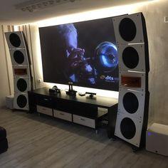 PureAudioProject Quintet15 Horn1 Open Baffle Speakers