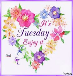 It's Tuesday, Enjoy It. tuesday tuesday quotes tuesday pictures tuesday images its tuesday tuesday pics Happy Tuesday Pictures, Happy Tuesday Quotes, Tuesday Humor, Its Tuesday, Happy Sayings, Hello Tuesday, Shirt Sayings, Good Morning Tuesday Wishes, Good Morning Happy