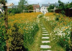 Get into the heart of your meadow with a mown or laid path!