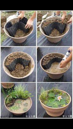 Mini frog pond