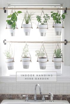 DIY Indoor Hanging Herb Garden // Learn how to make an easy, budget-friendly hanging herb garden for your window. It will make your house prettier and fill your gardening void during winter months.