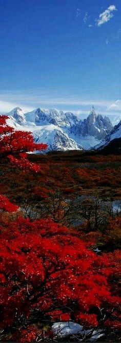 Argentina  Argentina Photography  In unserem Blog viel mehr Informationen http://storelatina.com/argentina/travelling #viajando #travelargentina #viajar #viajeargentina