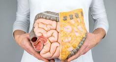 Bağırsak bakterileri kanser tedavisinin işe yarayıp yaramamasında söz sahibi olabilir.