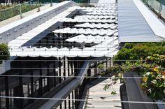 Detalle de vegetación colgante en cubiertas de edificios finalizados en fase 1 de la Ciudad BBVA, Nueva Sede de BBVA. Cortesía de BBVA. Seña...