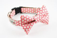 Definitely going to get a cute collar for our puppy (when we get her!)