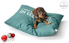 Christmas Archives - Muddy Mutts and Pocket Pups Luxury Christmas Presents, Dog Blankets, Luxury Cushions, Dog Bed, Luxury Bedding, Color Combinations, Slogan, Bean Bag Chair, Your Dog