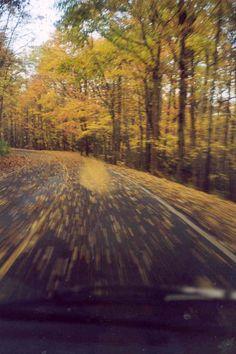 November in the Smoky Mountains near Gatlinburg, TN.