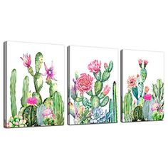 Buy Canvas Wall Art for living room bathroom Wall Decor for bedroom kitchen artwork Canvas Prints green cactus flowers painting x 3 Pieces Modern framed office Home decorations family picture Living Room Canvas Prints, Living Room Art, Cactus Wall Art, Cactus Print, Free Canvas, Wall Canvas, Kitchen Artwork, Digital Print, Green Cactus