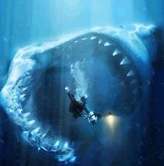 approximate size of a Megaladon. These magnificent creatures became extinct just under 2 million years ago.