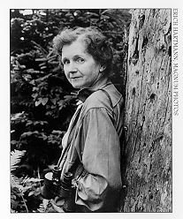 """Rachel Carson (1907 - 1964)  Widely credited as the mother of the modern environmental movement, Carson published """"Silent Spring"""" in 1962, which exposed the hazards of pesticide DDT."""